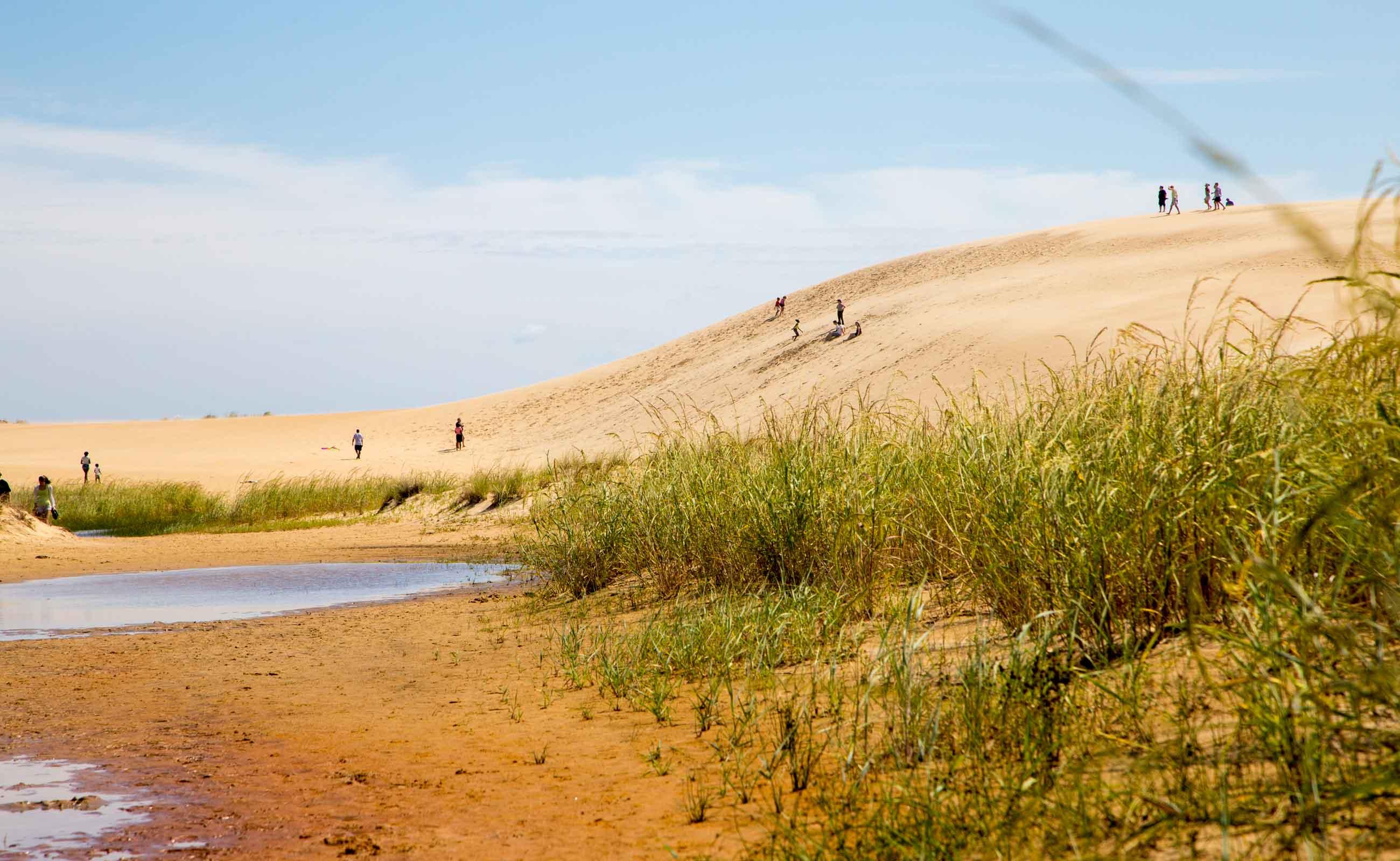 jockeys-ridge-sand-dune